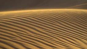 Deserto del Dubai durante il giro Emirati Arabi Uniti di Atv video d archivio