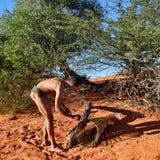 Deserto del Kalahari del cacciatore del boscimano, Namibia Immagini Stock Libere da Diritti