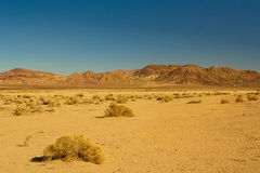 Deserto del Mojave fotografia stock