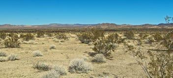 Deserto del Mojave California fotografie stock