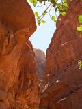 Deserto del rum del Wadi del deserto Fotografie Stock Libere da Diritti