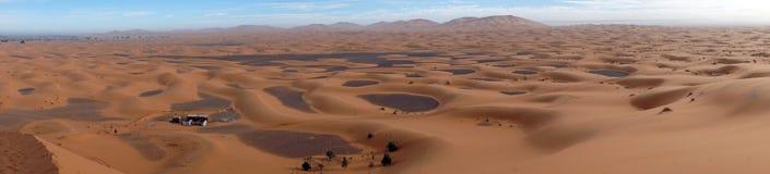 Deserto del Sahara nel Sahara Fotografia Stock Libera da Diritti