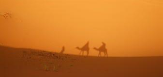 Deserto del Sahara - ombra del caravan Fotografia Stock
