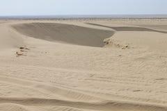 Deserto del Sahara Tunisia, Ghlissia Kebili I immagine stock libera da diritti