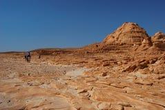 Deserto del Sinai Fotografie Stock