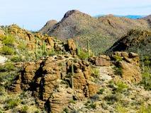 Deserto del sud dell'Arizona Fotografia Stock Libera da Diritti