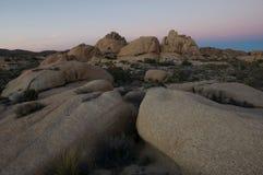 Deserto dell'albero di Joshua   fotografie stock libere da diritti