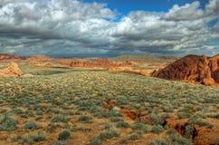 Deserto dell'arenaria rossa e della spazzola prudente Fotografie Stock Libere da Diritti