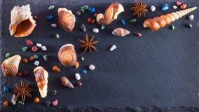 Deserto della caramella di cioccolato Caramelle di cioccolato sotto forma di frutti di mare sulla pietra fotografia stock libera da diritti
