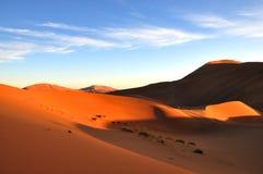 Deserto della duna di sabbia Fotografia Stock Libera da Diritti