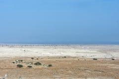 Deserto della Giudea e nei precedenti sull'orizzonte le rive del mar Morto l'israele immagine stock