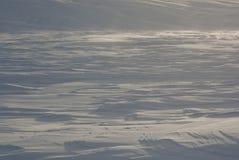 Deserto della neve. Fotografia Stock