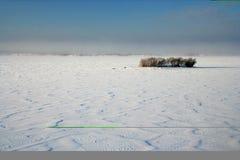 Deserto della neve Fotografia Stock Libera da Diritti