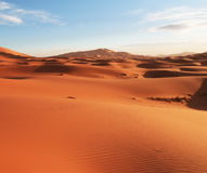 Deserto della sabbia Immagini Stock