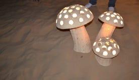 Deserto delle luci notturne del fungo Fotografia Stock