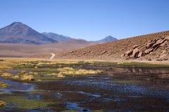 Deserto di Atacama Immagine Stock Libera da Diritti