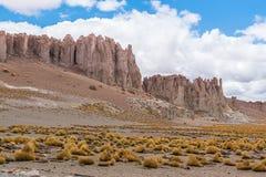 Deserto di Atacama, Cile Fotografia Stock Libera da Diritti