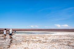 Deserto di Atacama, Cile Immagini Stock
