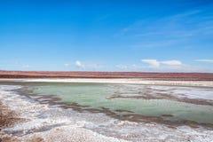 Deserto di Atacama, Cile Immagini Stock Libere da Diritti