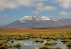 Deserto di Atacama cileno fotografia stock