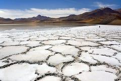 Deserto di Atacama nel Cile Fotografia Stock