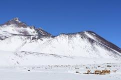 Deserto di Atacama sotto neve. Fotografia Stock Libera da Diritti