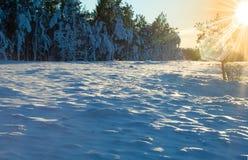 Deserto di inverno fotografia stock libera da diritti