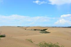 Deserto di Medanos de Coro, Venezuela fotografia stock