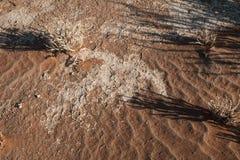 Deserto di Namib Immagini Stock