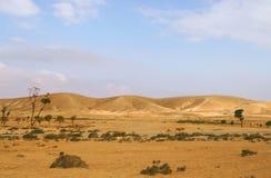 Deserto di Negev nell'Israele. Immagini Stock Libere da Diritti
