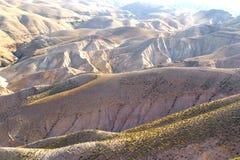 Deserto di Negev nell'Israele Immagini Stock Libere da Diritti