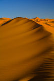 Deserto di Sahara Fotografie Stock