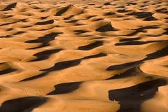 Deserto di Sahara Immagini Stock Libere da Diritti