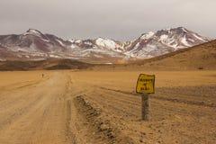 Deserto di Siloli in Bolivia del sud Fotografie Stock Libere da Diritti