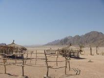 deserto di Sinai Fotografia Stock Libera da Diritti