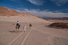 Deserto di Sinai con la sabbia ed il sole sotto cielo blu a dicembre con la p fotografia stock
