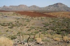 Deserto di Teide Fotografie Stock Libere da Diritti