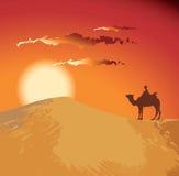 Deserto di tramonto Fotografia Stock Libera da Diritti