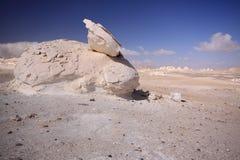 Deserto di Whitte fotografie stock