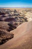 Deserto dipinto Fotografia Stock Libera da Diritti