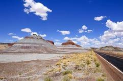 Deserto dipinto, Forest National Park petrificato Immagini Stock Libere da Diritti