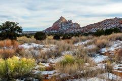 Deserto do Arizona imagem de stock