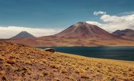Deserto do Chile Atacama fotografia de stock royalty free