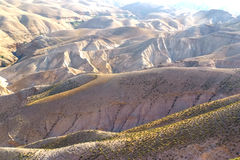 Deserto do Negev em Israel Imagens de Stock Royalty Free