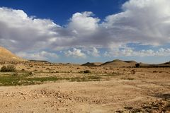 Deserto do Negev na mola no fundo do céu azul Imagens de Stock