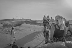 Deserto do passeio do camelo de Rajasthan, Índia Fotografia de Stock