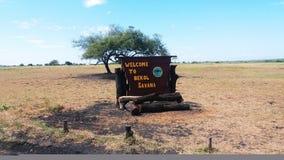Deserto do savana em indonésio fotos de stock royalty free