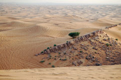 Deserto in Doubai Fotografia Stock