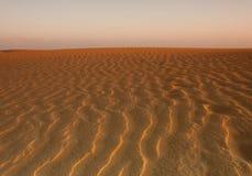 Deserto dourado Imagem de Stock Royalty Free