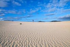 Deserto e dune fotografia stock libera da diritti